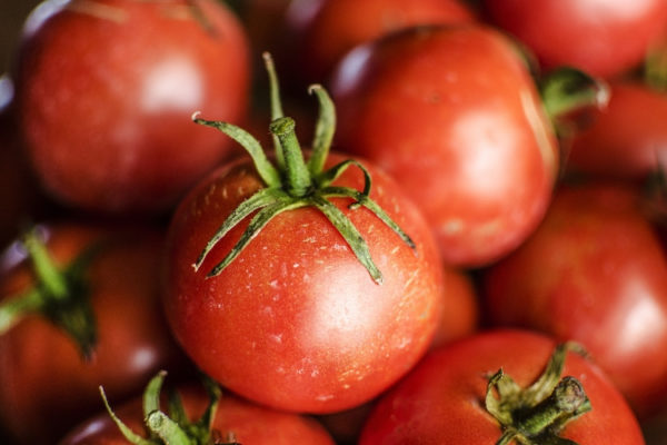 Tomaten selber ziehen: 5 Tipps für eine erfolgreiche Ernte!