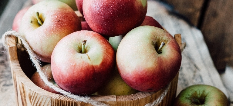 Apfelwein selber machen: Zwei Kieler zeigen, wie es geht! Schritt für Schritt + Video-Anleitung!