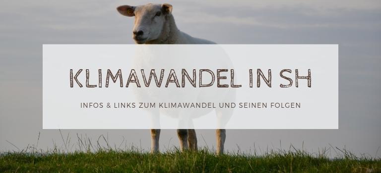 Klimawandel Schleswig-Holstein: Infos und Quellen zu Klimawandel Folgen im Norden
