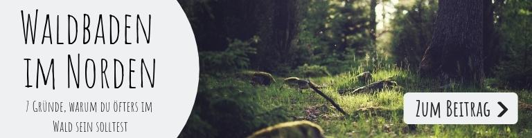 Wald baden: 7 Gründe, warum du öfters im Wald sein solltest