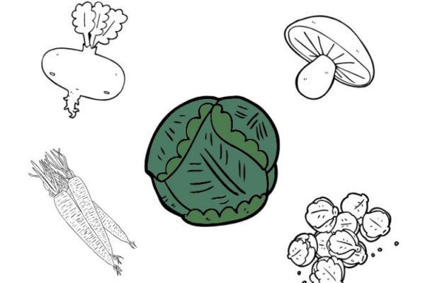 Hat das gerade Saison? Saisonkalender Obst und Gemüse (PDF)