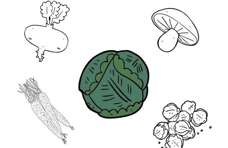Hat das gerade Saison? Saisonkalender Obst und Gemüse (PDF): Kostenlosen Saisonkalender einfach herunterladen und ausdrucken!