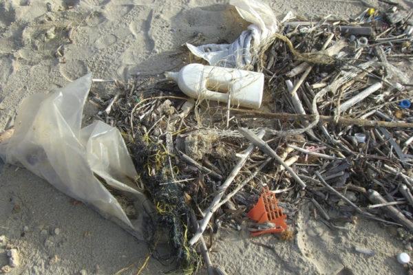 Unser Wattenmeer: 10 Bedrohungen für das Weltnaturerbe
