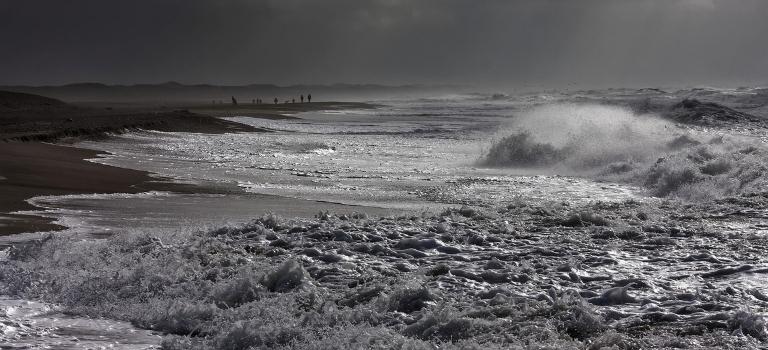 Wattenmeer: Klimawandel und Verschmutzung: 10 Bedrohungen für das Weltnaturerbe Nationalpark Wattenmeer
