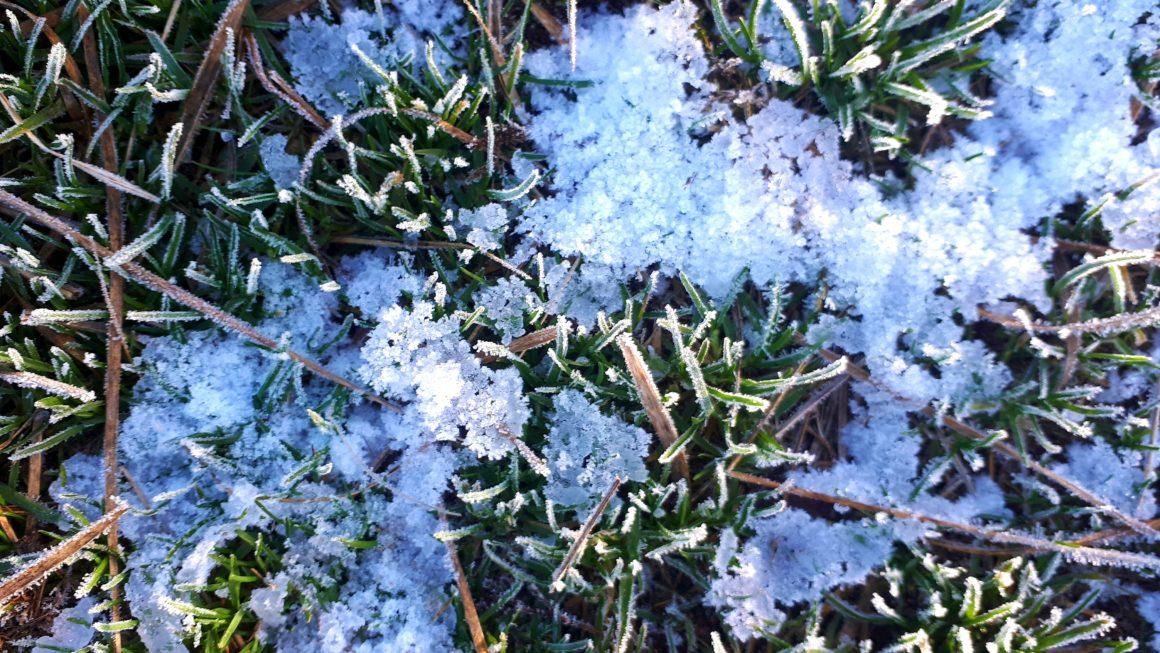 Hintergrundbilder Natur_Hintergrundbilder Winter: Kostenloser Download!