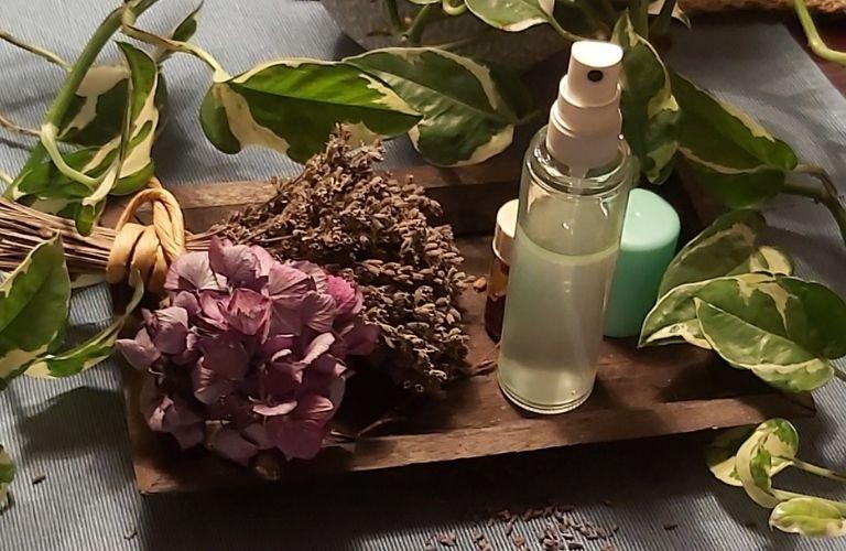 Lavendel_ Wunderpflanze richtig ernten und nutzen_ fertiges Lavendelbettspray