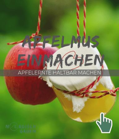 Apfelmus einmachen: So könnt Ihr Apfelmus ganz einfach einmachen: Apfel Rezepte