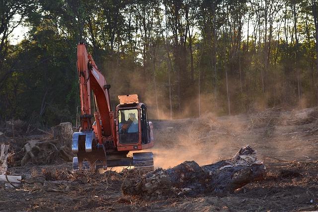 Massentierhaltung: Tabuthema Massentierhaltung: Definition, Infos und Umwelteinfluss | nordischgruen