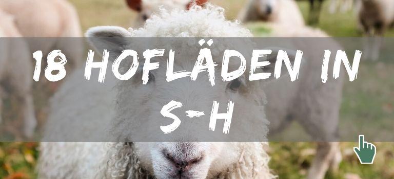 Hofläden in Schleswig-Holstein: Hier findet ihr tolle Hofläden in Schleswig-Holstein!