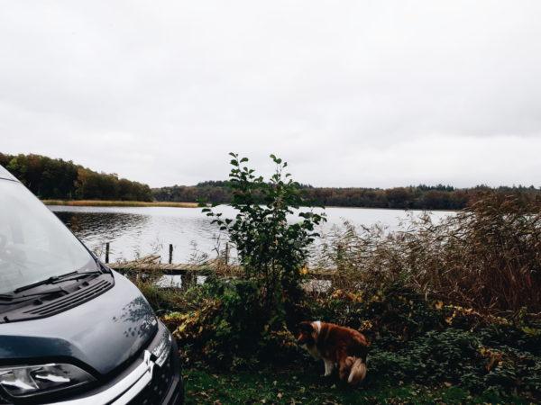 Naturpark Lauenburgische Seen_Camping Schaalsee1