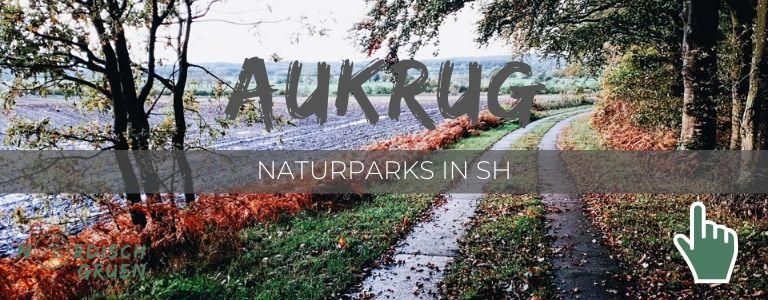 Unterwegs im Naturpark Aukrug (5ter Stopp)