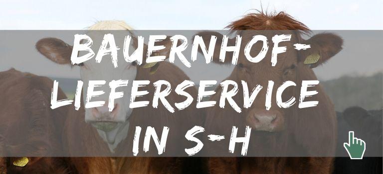 Karte mit Bauernhof Lieferservice in Schleswig-Holstein: Diese Bauernhöfe haben einen Lieferservice in S-H