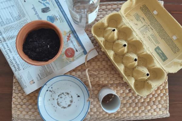 Anzuchttöpfe selber machen: So einfach geht's
