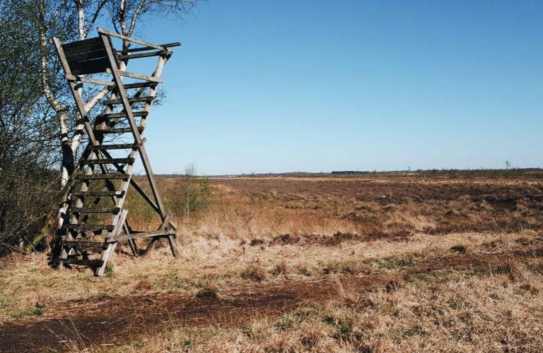 Ausflüge Schleswig-Holstein: Eider-Treene-Sorge-Niederung_ Auf ins Moor_Moor in Schleswig-Holstein