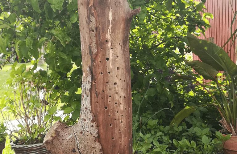 Insektenhotel selber bauen: Ergebnis des Hotels