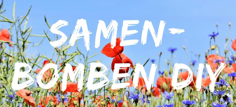 Einheimisch und bienenfreundlich: Samenbomben selber machen_Blumen