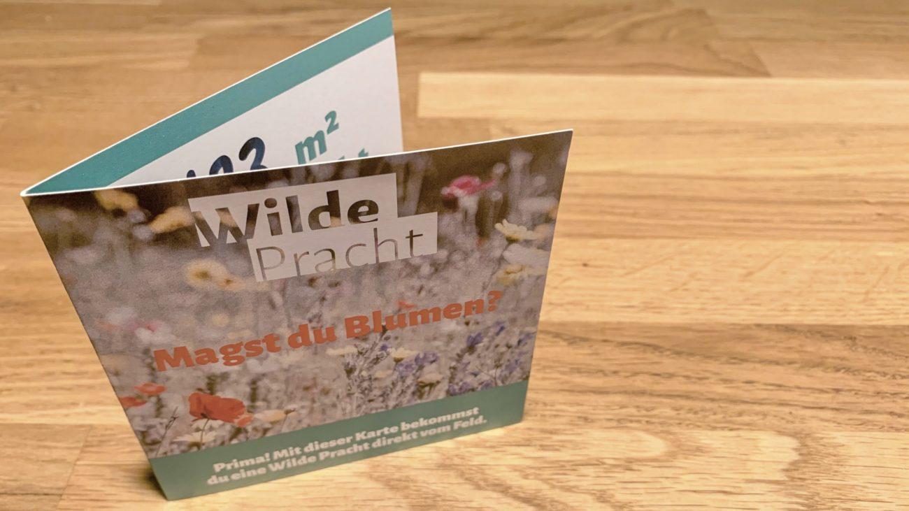 Wilde Pracht Blühkarte_nordischgruen_Blühwiese Schleswig-Holstein