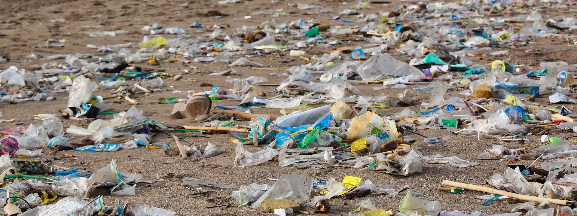 Müll am Strand_Zero Waste Itzehoe e.V.