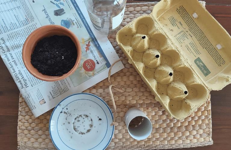 Anzuchtbehälter selber machen: So einfach verwandelst du dein Papiermüll in einen Anzuchtbehälter: So einfach gehts: Eierkarton, Klopapierrolle, Zeitungspapier
