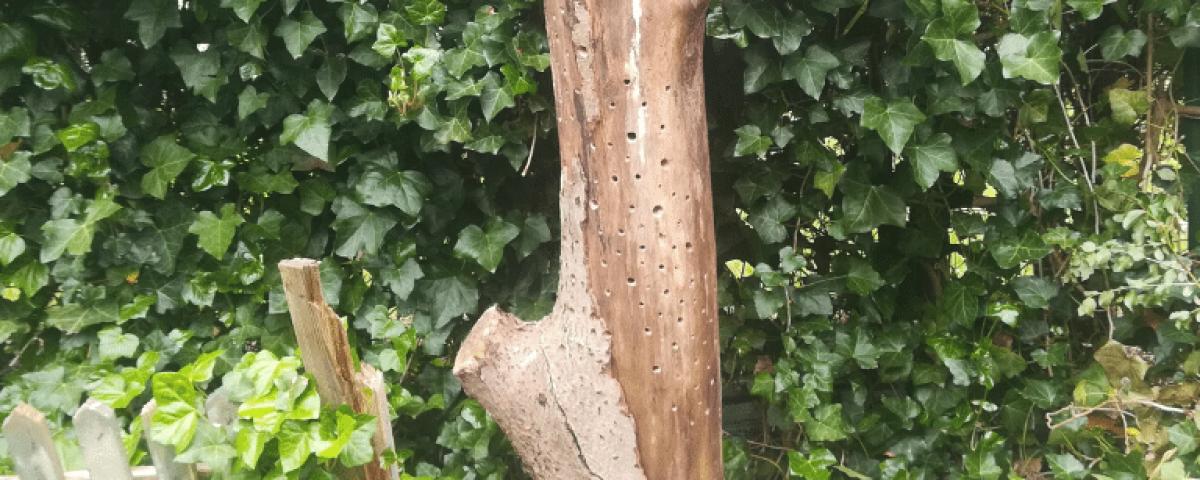 Insektenhotel selber bauen: Ergebnis des Hotels mit Dach