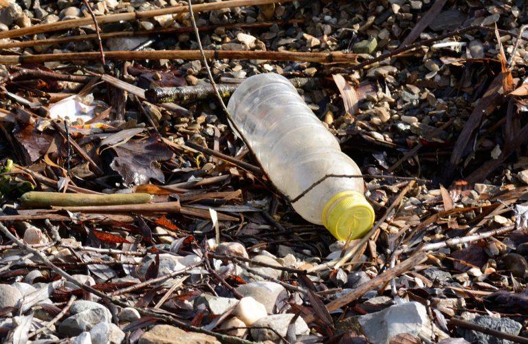 Plastikmuell Meer und Land_nordischgruen