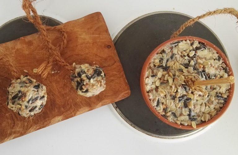 Vogelfutter selbst machen: Rezept für eine Futterglocke und Knödel